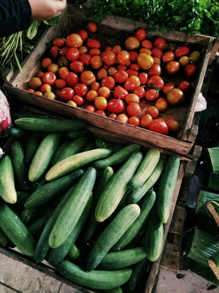 cucumbers and tomatos at stand on anna maria island